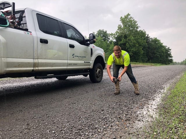 a member of a Sterling crew rescues a decorated box turtle from the road